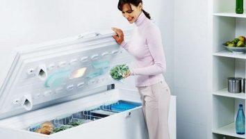 Специфика выбора морозильников